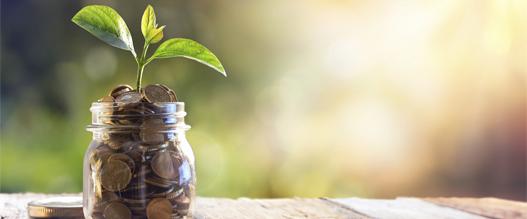 groenestroomcertificaten bedrag: hoeveel krijg je in 2018?